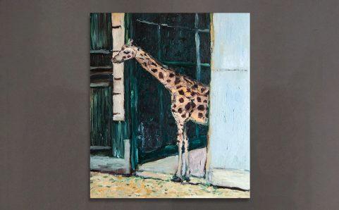 To see Giraffe.