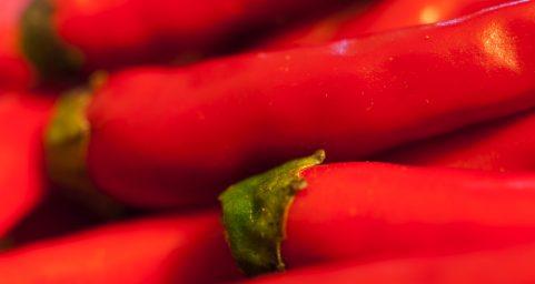 rice chilli.米椒
