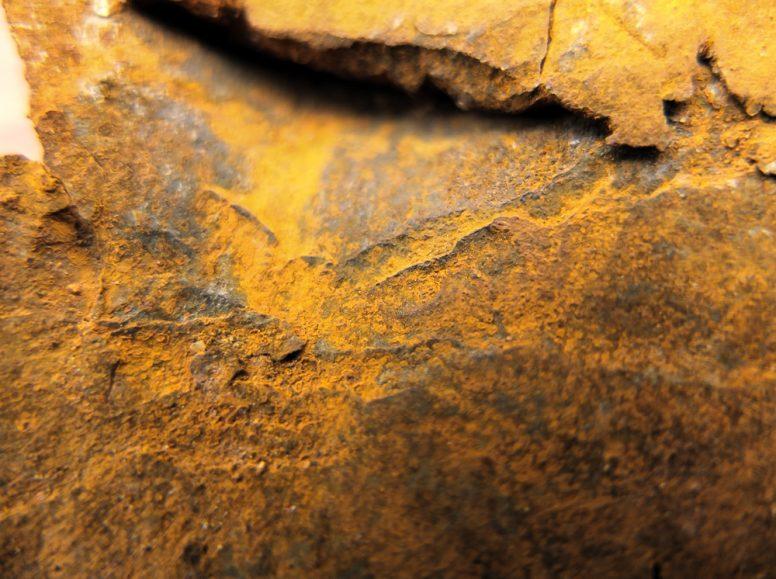rust.铁锈