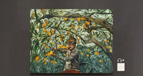 the old in his orchard.