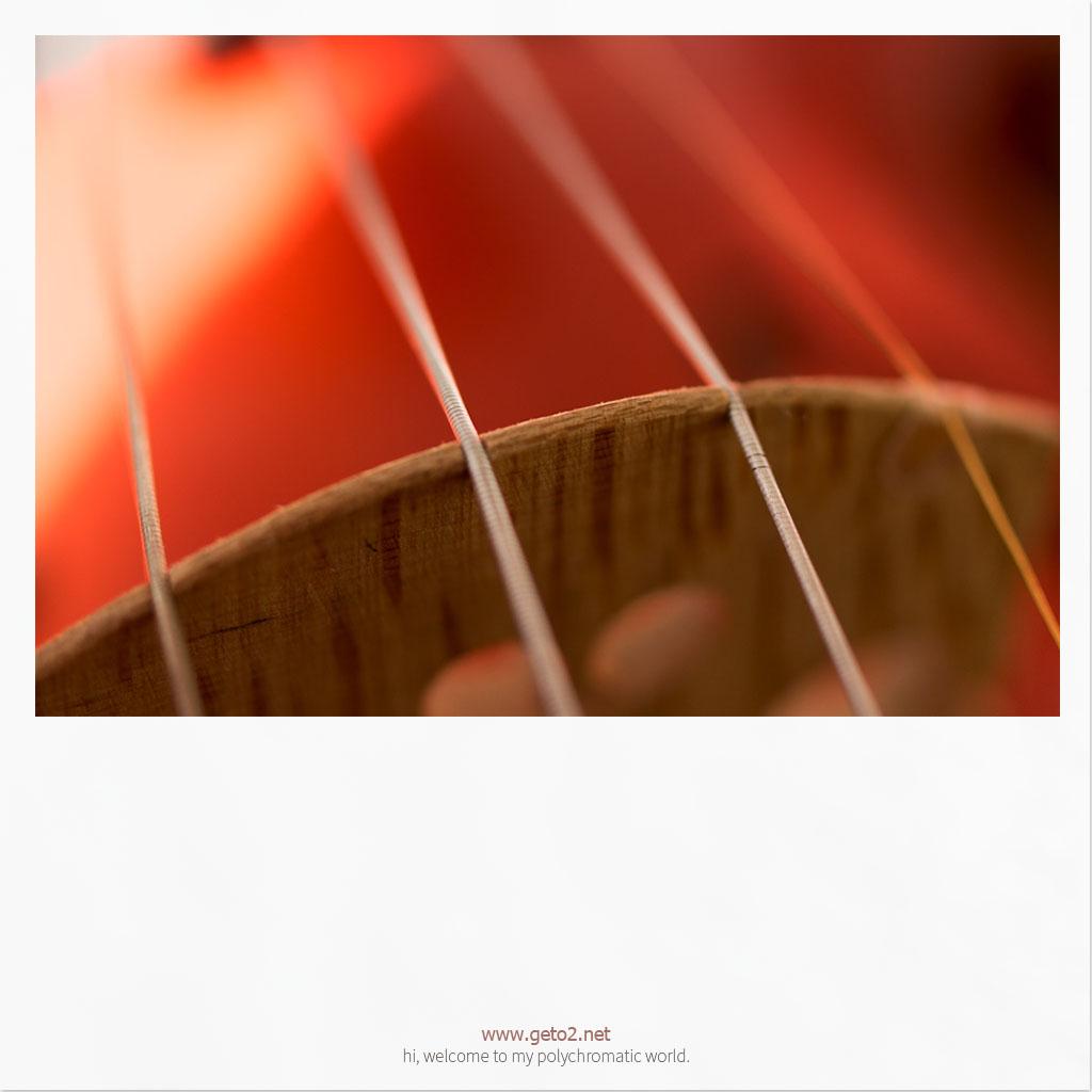 string.琴弦