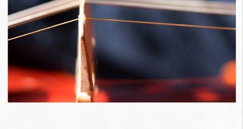 拉弦板对小提琴声音的影响. 撰文 王瑜慧