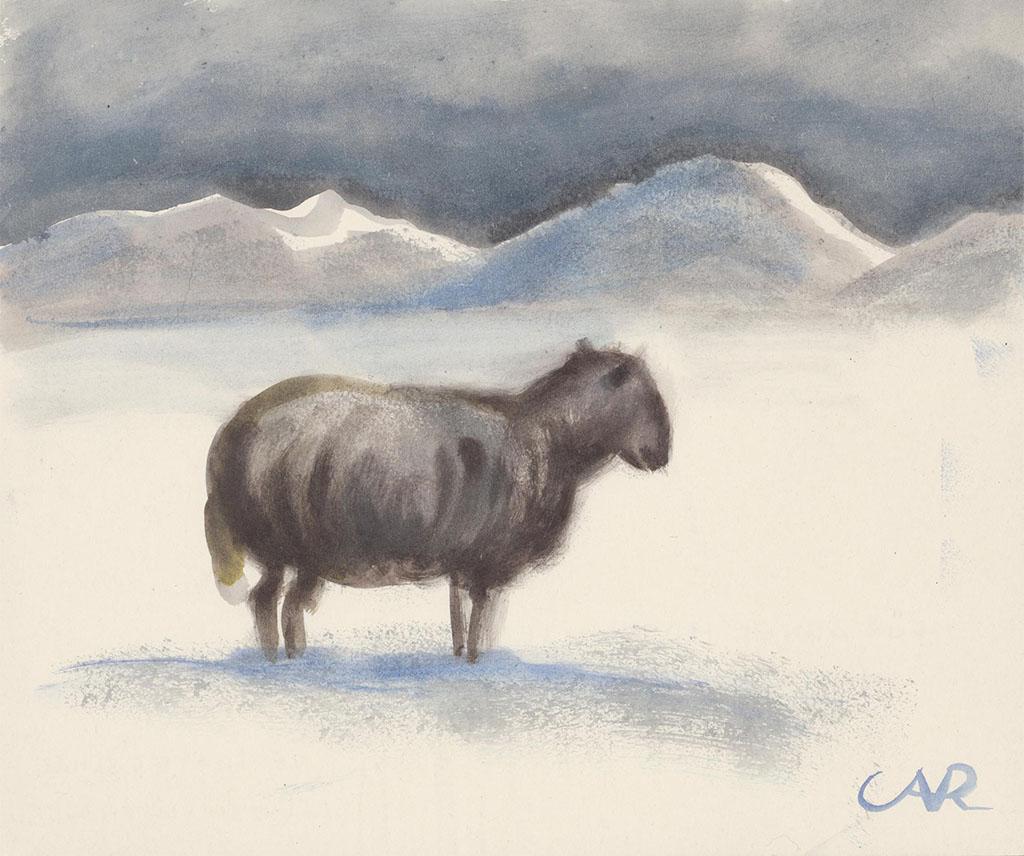多雪沙丘中失去的绵羊 安妮塔·莉亚