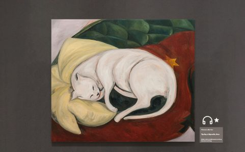 sleeping cat, on pillow.